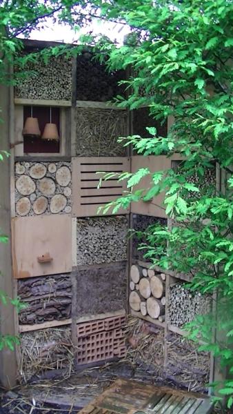 plan et r alisation de maison insectes forum gazon. Black Bedroom Furniture Sets. Home Design Ideas