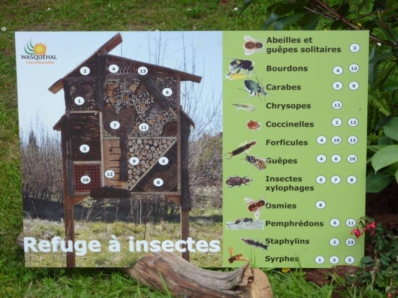 Plan et r alisation de maison insectes forum gazon for La maison des gazons